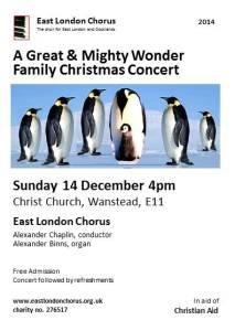 Flyer - Family Christmas Concert